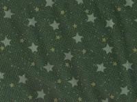 1929-03 Starry Night Lynette Anderson